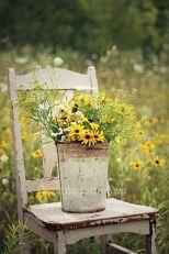 blog yellow flowers