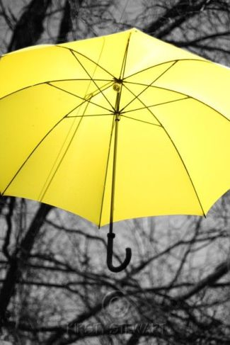 blog yellow umbrella